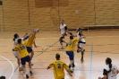 Spiel gegen HV Oederan 03.11.2013